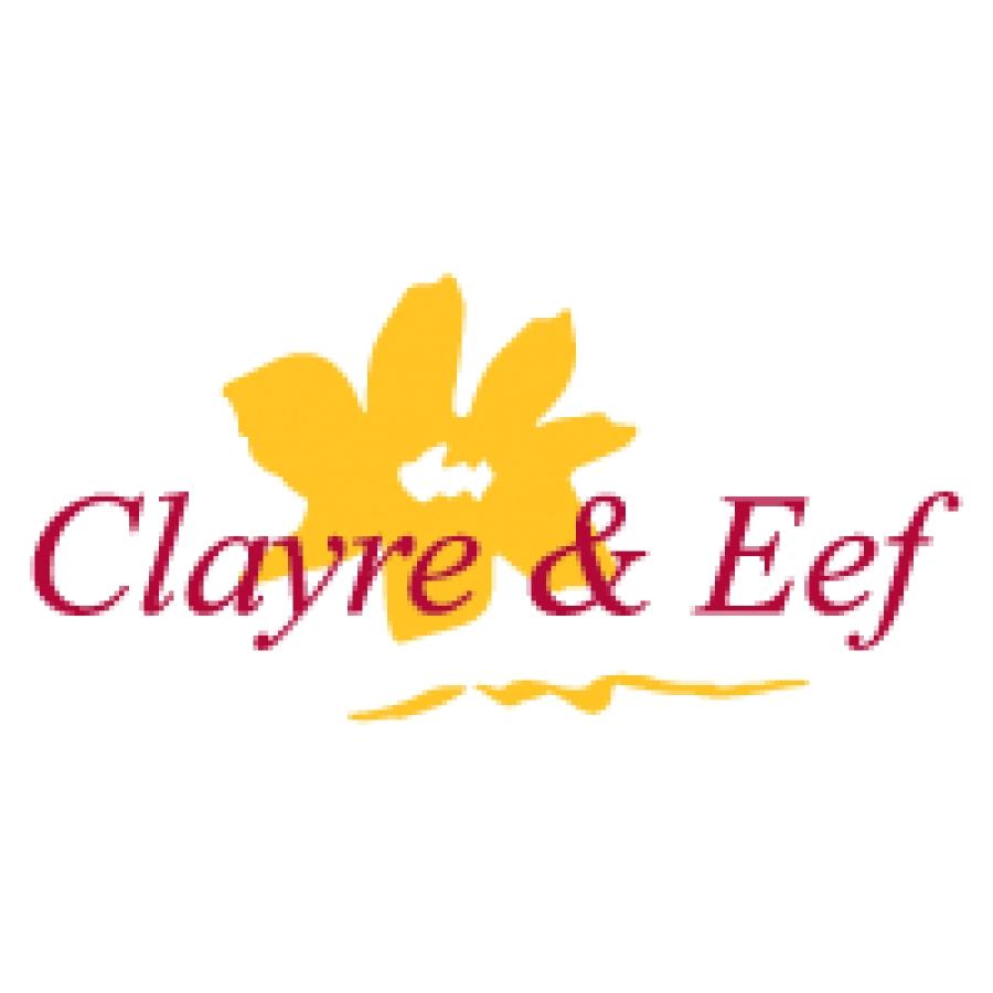 clayre et eef patrickcombet sas articles pour fleuristes et boutiques cadeaux. Black Bedroom Furniture Sets. Home Design Ideas