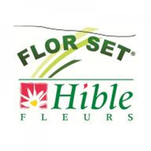 Hible - Flor Set